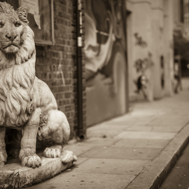 """Lion Street Pride"" stock image"