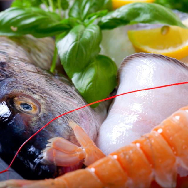 """""""Fresh seafood on ice"""" stock image"""