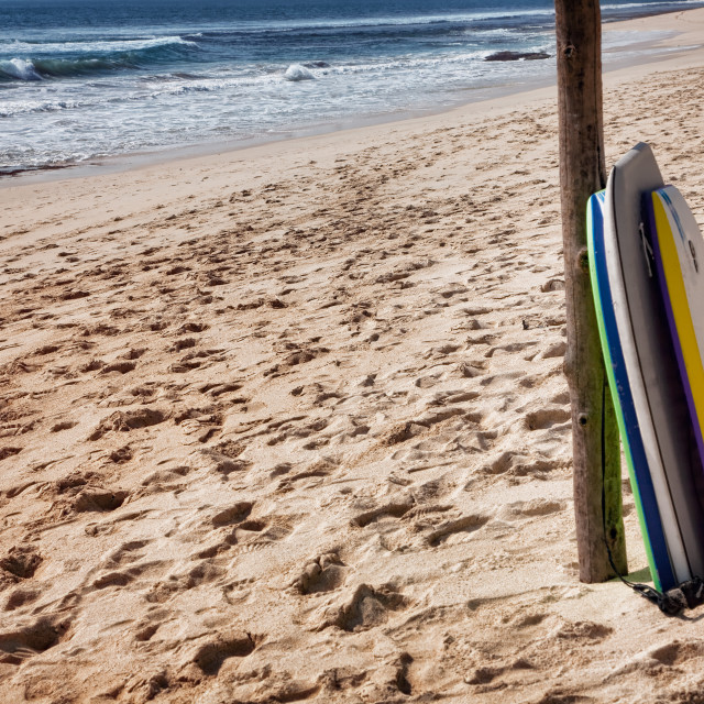 """Bodyboards on the beach"" stock image"