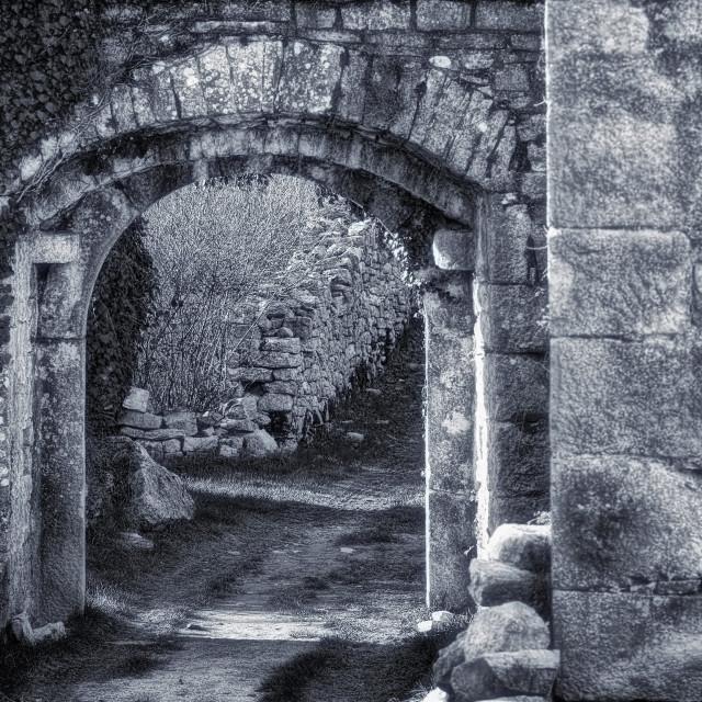 """Doors in the castle, retro style toned photo"" stock image"