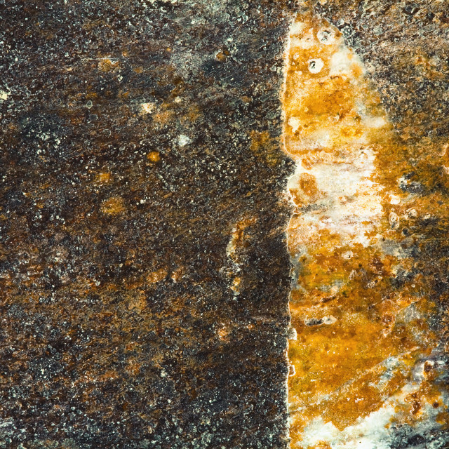 """""""Grunge metal texture or background"""" stock image"""