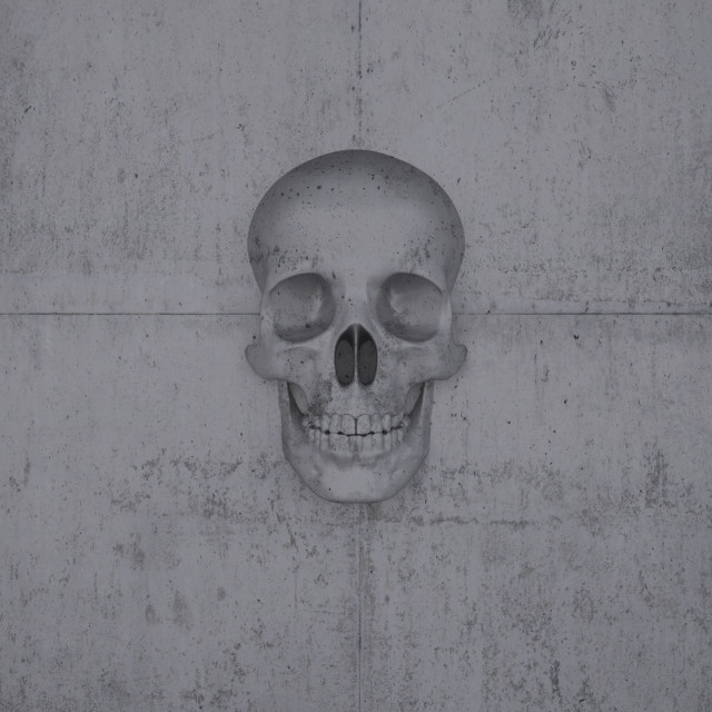 """Skull on a wall of concrete"" stock image"