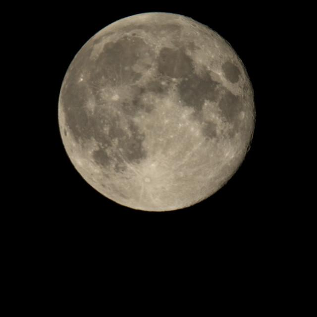 """""""September Full Moon"""" stock image"""
