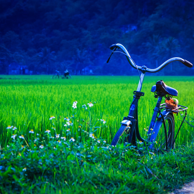"""Bike on the fields"" stock image"
