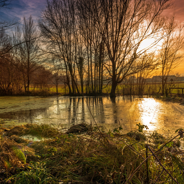 """Sunset pond"" stock image"