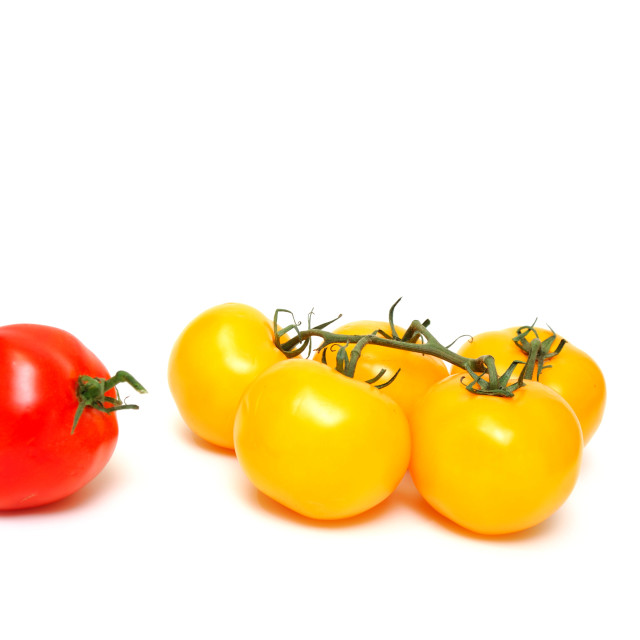 """Red And Yellow Tomato"" stock image"