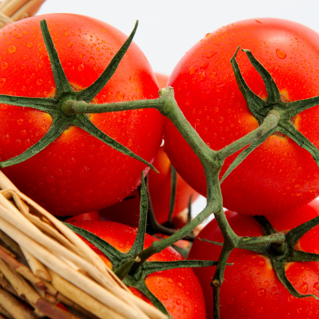 """Tomatoes In A Wicker Basket"" stock image"