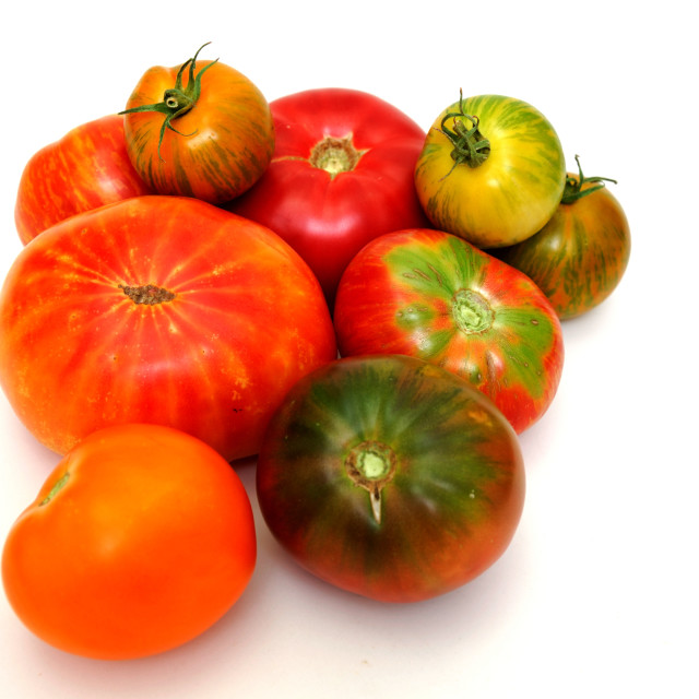 """Colorful Tomatoes"" stock image"