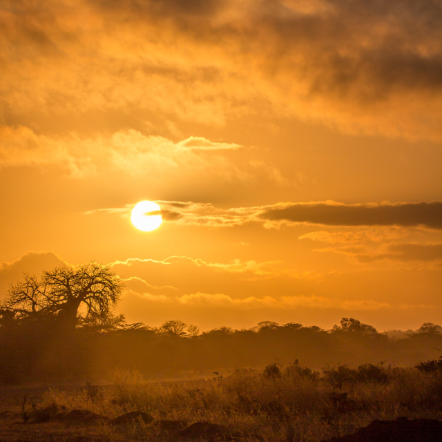 """African Sunrise"" stock image"