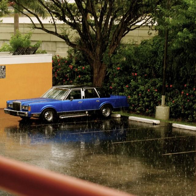 """Rainy Day in Paradise"" stock image"