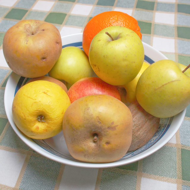 """""""Fruits"""" stock image"""