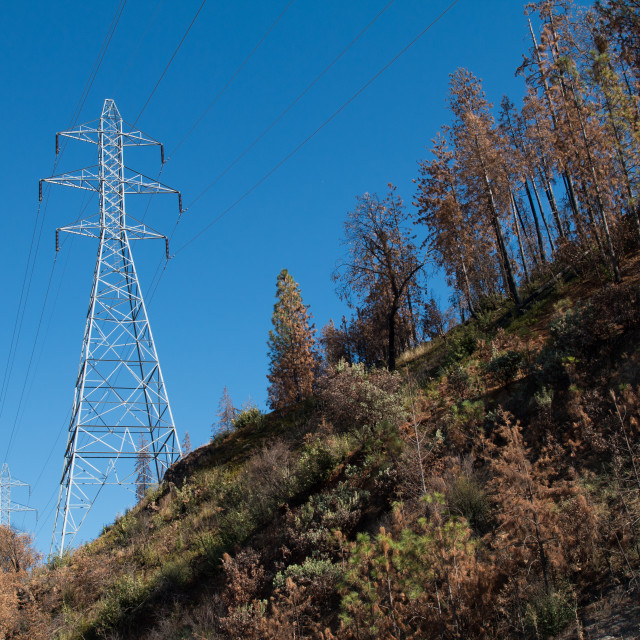 """""""High voltage transmission towers."""" stock image"""