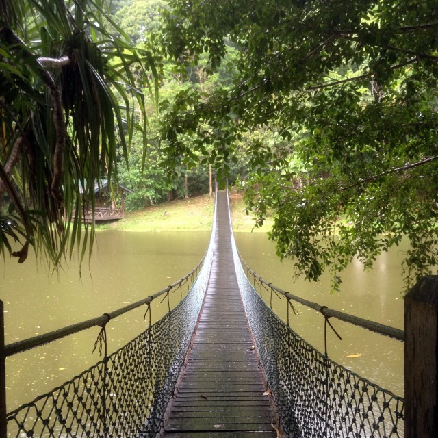 """Rope bridge"" stock image"