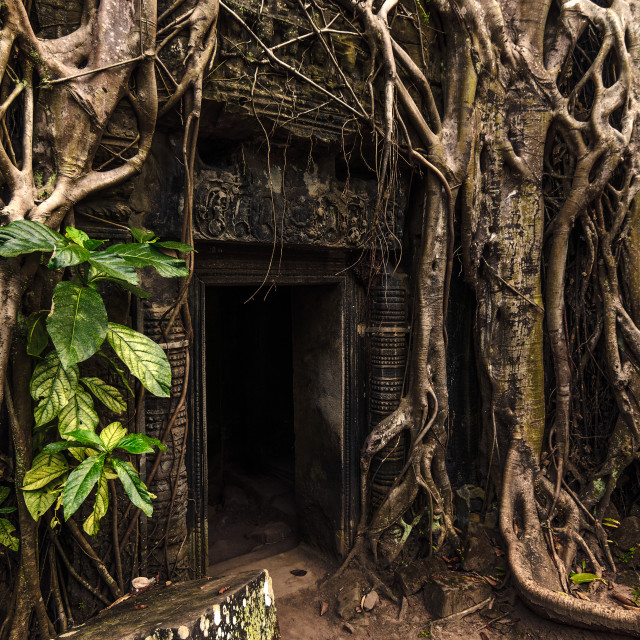 """Doorway to Jungle Temple"" stock image"