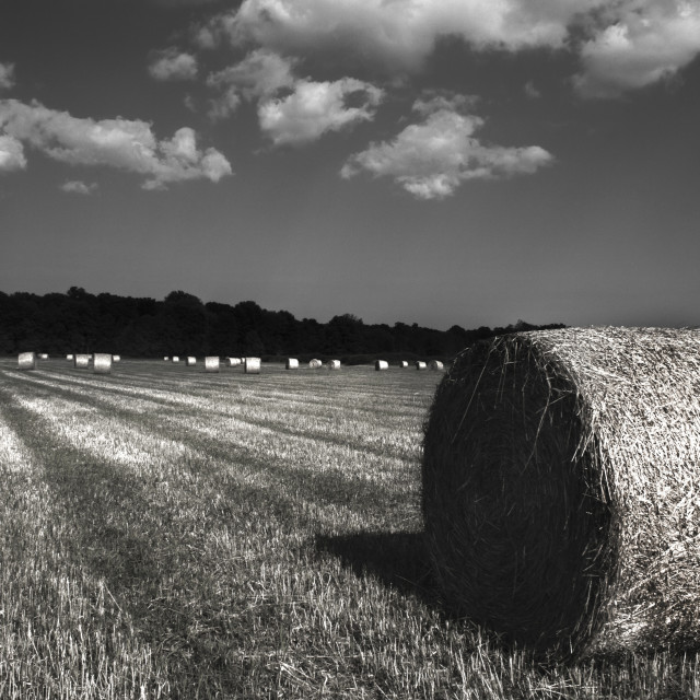 """Hay Roll"" stock image"