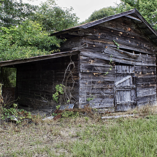 """Weathered Shed"" stock image"