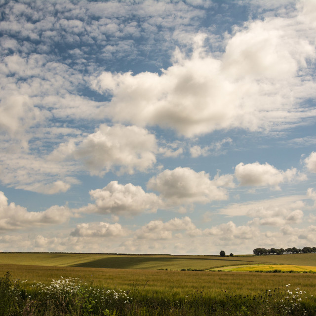 """Big sky, Hampshire"" stock image"