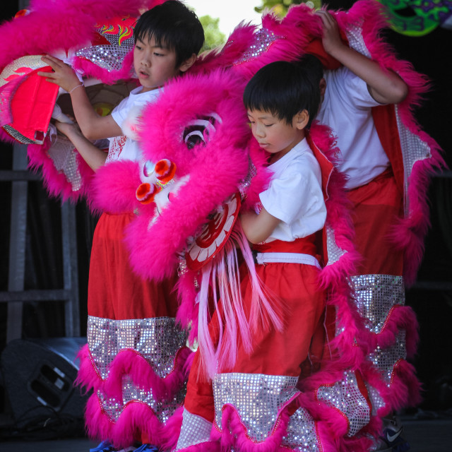 """""""Young lion dancers"""" stock image"""