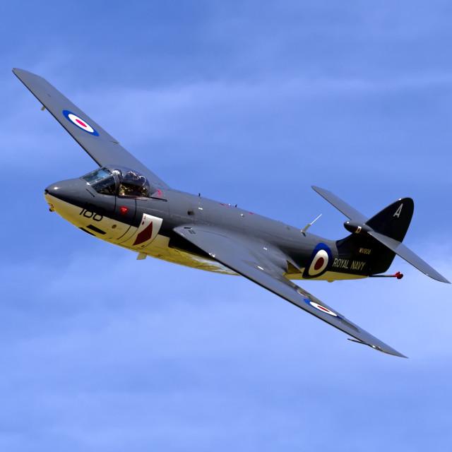 """""""Hawker Sea Hawk FGA.6 WV908 188/A"""" stock image"""