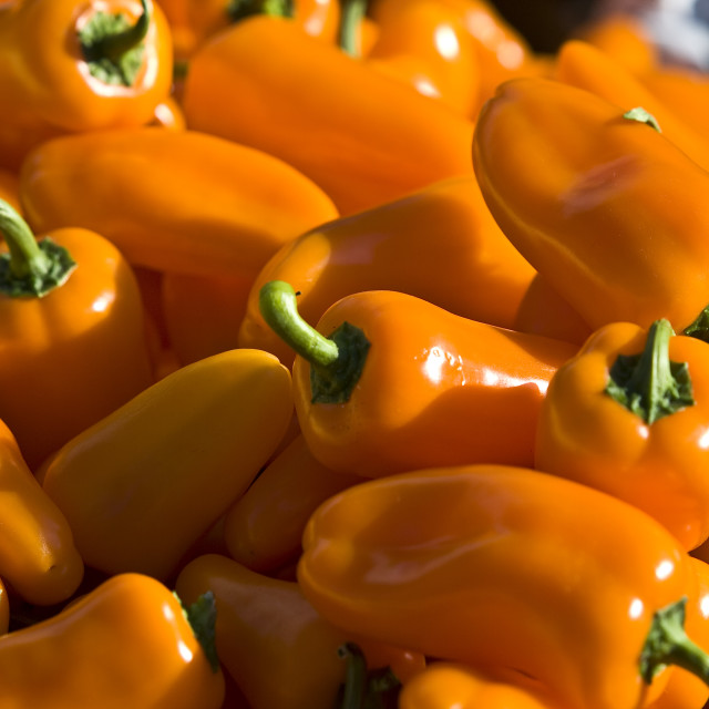 """""""peppers"""" stock image"""