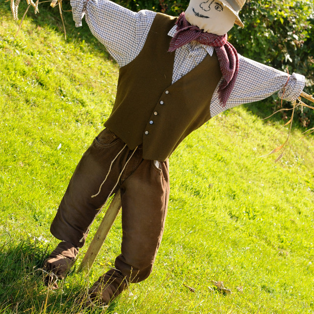 """""""Summer scarecrow"""" stock image"""