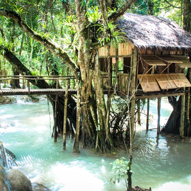 """House on Stilts, Laos"" stock image"