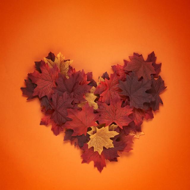 """Fall Love"" stock image"