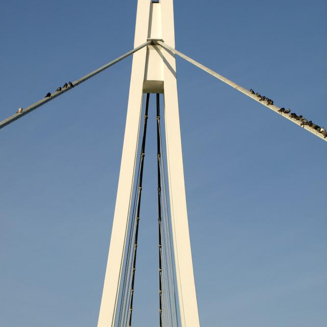 """""""Suspension Bridge"""" stock image"""