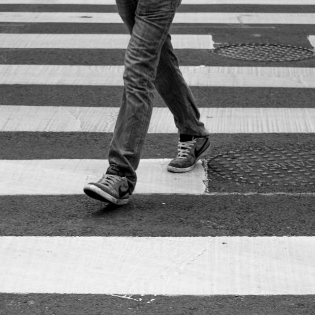 """Walking on the Zebra!"" stock image"