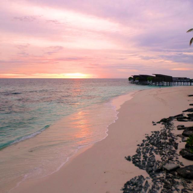 """""""Maldivian beach at sunset"""" stock image"""