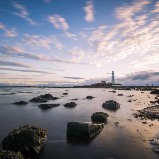 """St Mary's Lighthouse Dawn"" stock image"