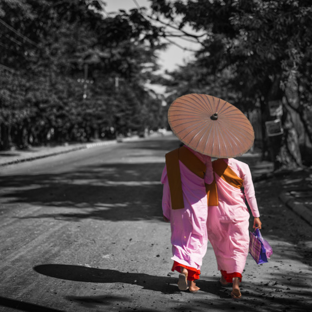 """Myanmar Buddhist Nun in the pink color are walking on the street"" stock image"