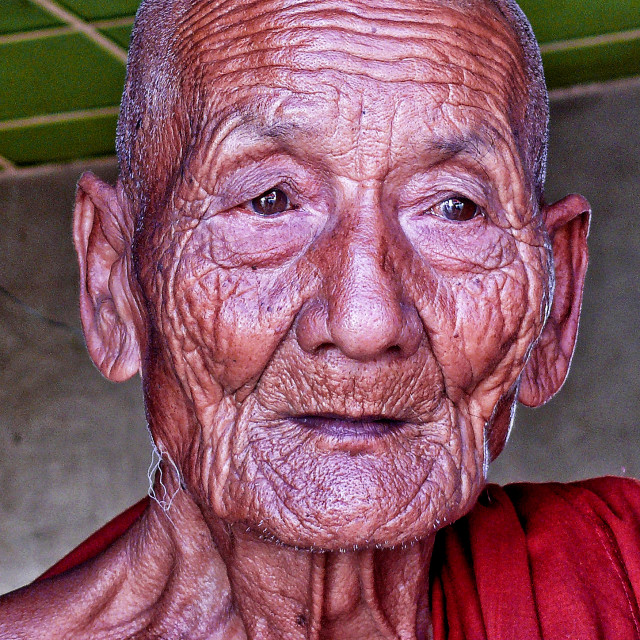 """THE OLD MONK"" stock image"
