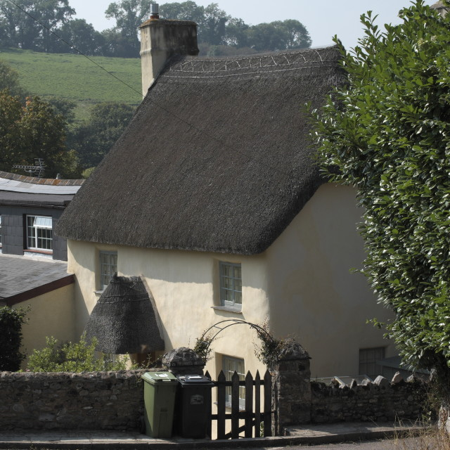 """""""Hillside cottage"""" stock image"""