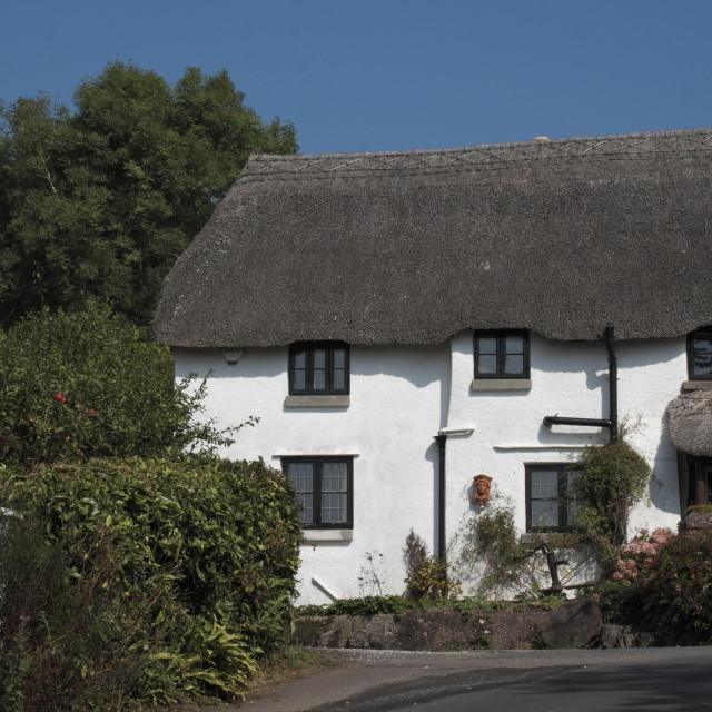 """""""Devon village cottage"""" stock image"""