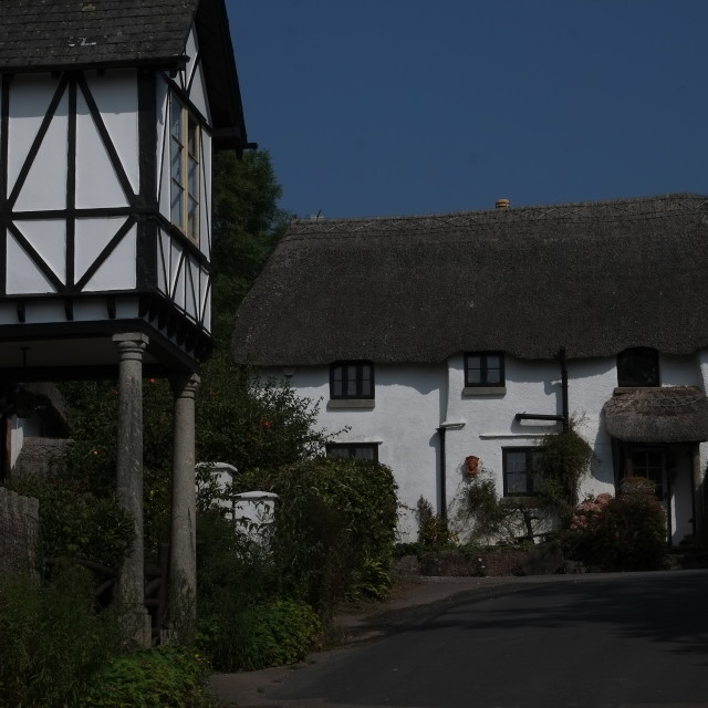 """""""Thatch and timber frame cottages."""" stock image"""