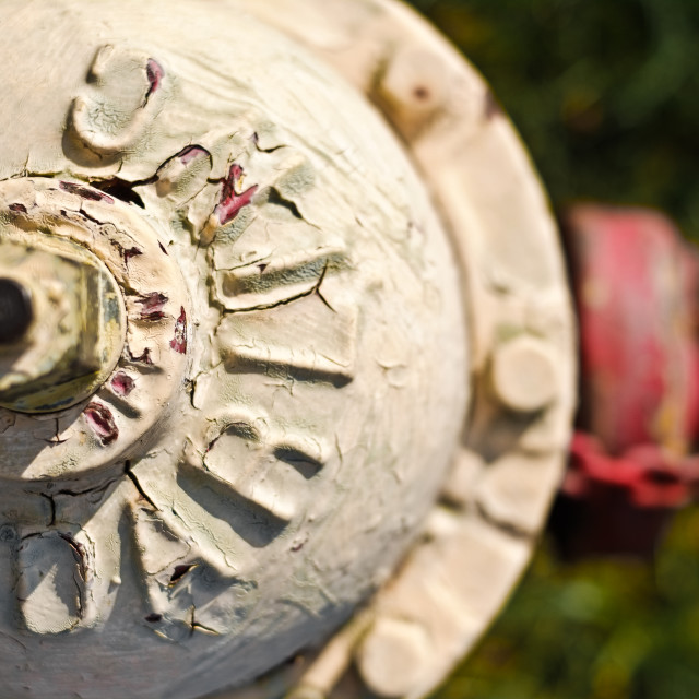 """Fire Hydrant"" stock image"