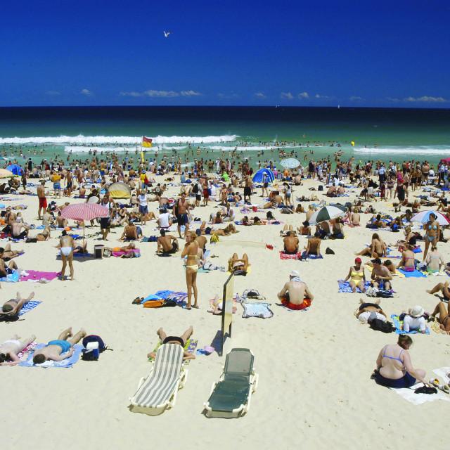 """Summer At Beach."" stock image"
