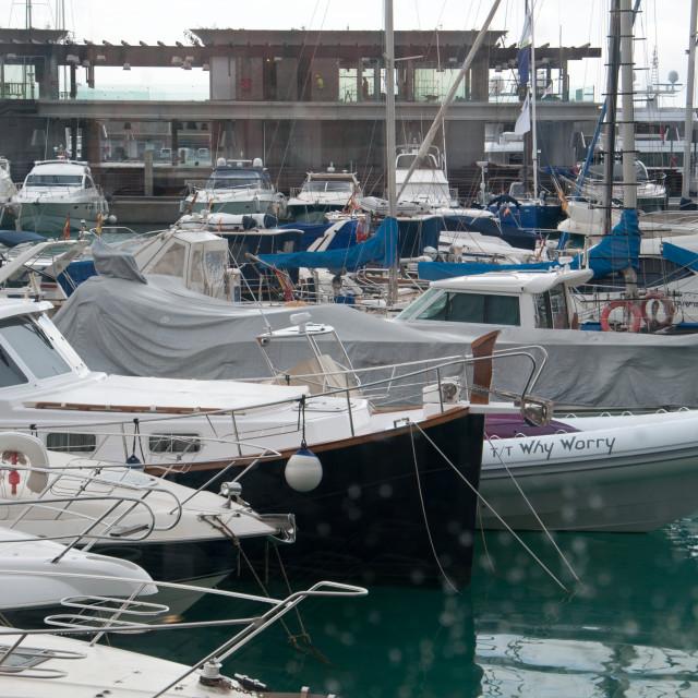 """""""Port Adriano marina"""" stock image"""
