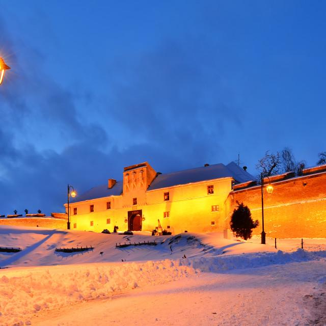 """""""Citadel of Brasov in night, Romania landmark"""" stock image"""