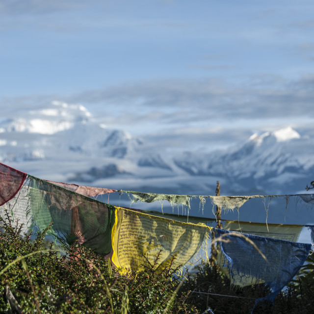 """Old Buddhist flags at Anapurna base camp"" stock image"