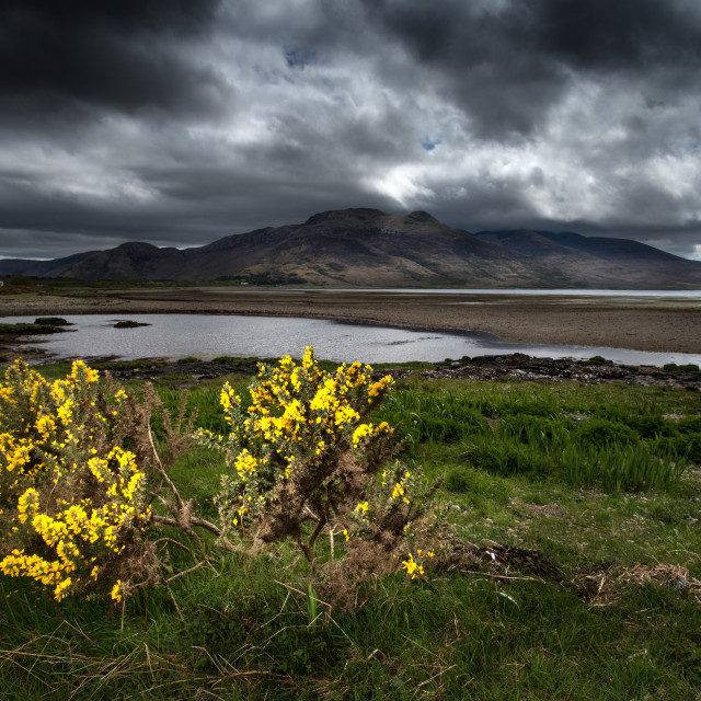 """Loch Na Keal - Isle of Mull"" stock image"