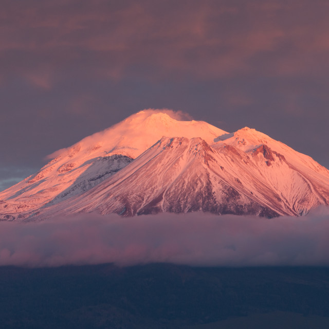 """Mt. Shasta with alpenglow."" stock image"