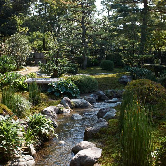 """Japanese Garden"" stock image"