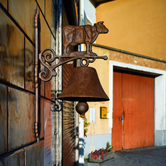 """Cow and bell"" stock image"