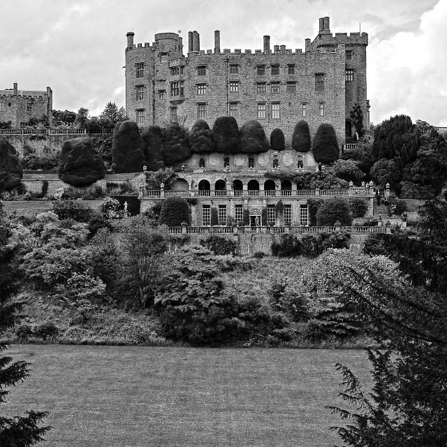 """Powys Castle"" stock image"