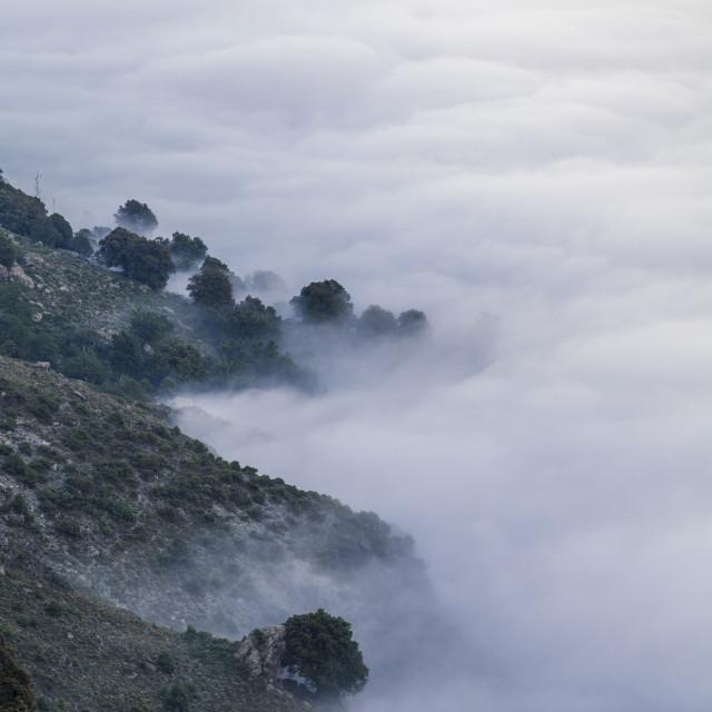 """Corsica, France"" stock image"