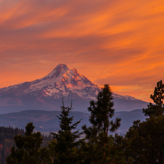 """Mount Hood from White Salmon"" stock image"