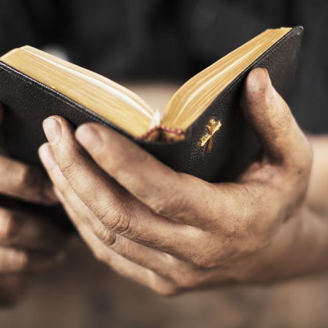 """Bible"" stock image"