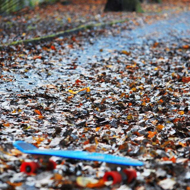 """Autumn Board."" stock image"